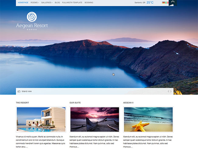 CSS Igniter: Over 29 Amazing WordPress Themes   only $17!